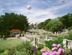 Balloon and gardens