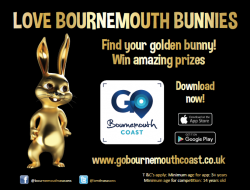 love bournemouth bunnies advert